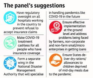 The Panel's Suggestions